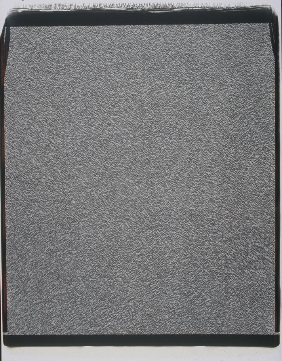 polaroid_20x24